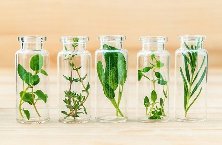 Aromatherapy: the benefits of ecolabelled essential oils