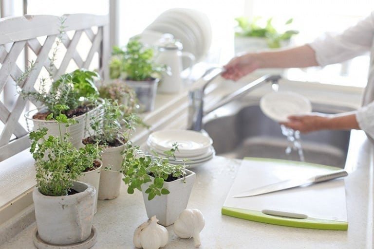 Votre guide pour une cuisine écologique