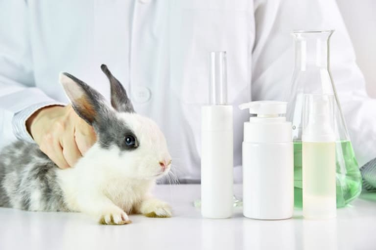 Animal testing: the truth about cruelty free labels used on cosmetics